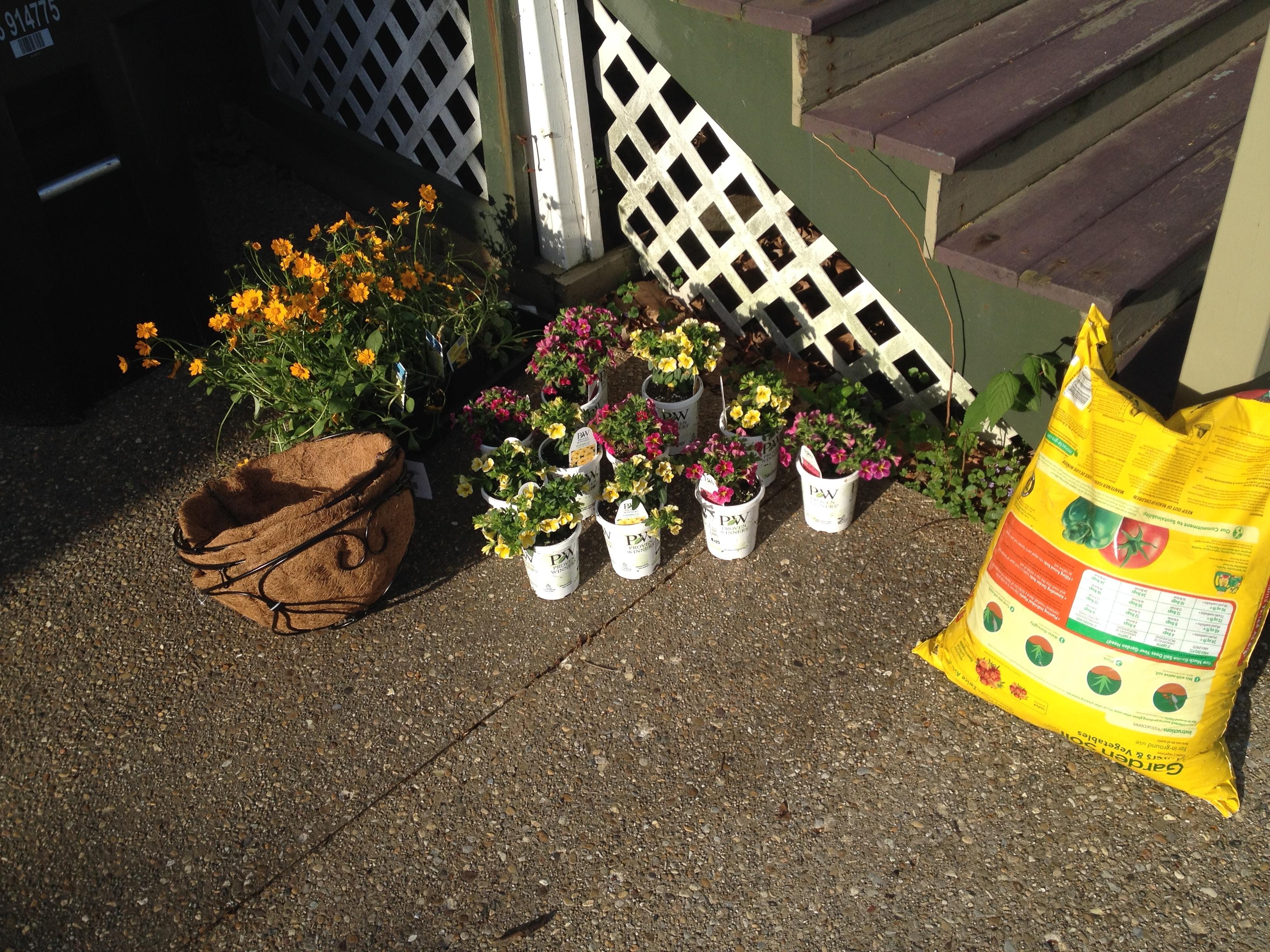 flowers – Frugal Living