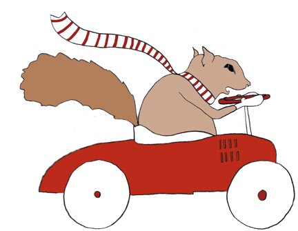 squirrel_car